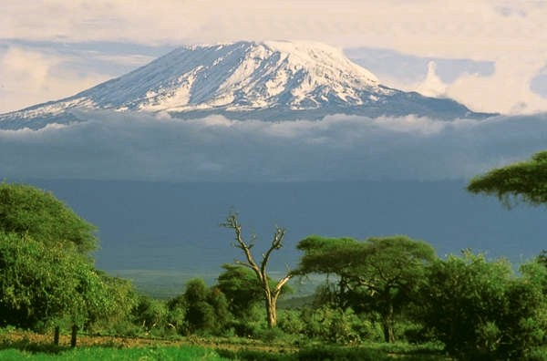 Mighty Kilimanjaro from the Savannah, click for details and to send it as an eCard in our picture gallery!
